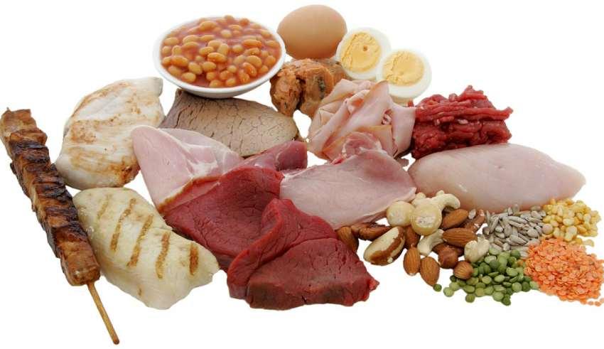 مصرف پروتئین بیشتر