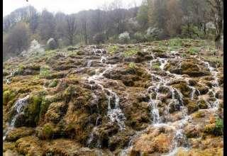 تور یک روزه جنگل ارفعده تا چشمه پراو چقدر هزینه میبرد؟