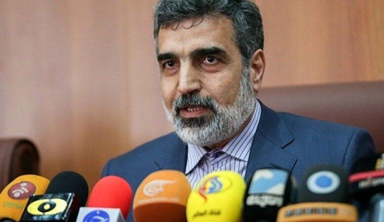 کمالوندی: گامهای بعدی ایران در صورت عدم اقدام طرفهای مقابل در راه است