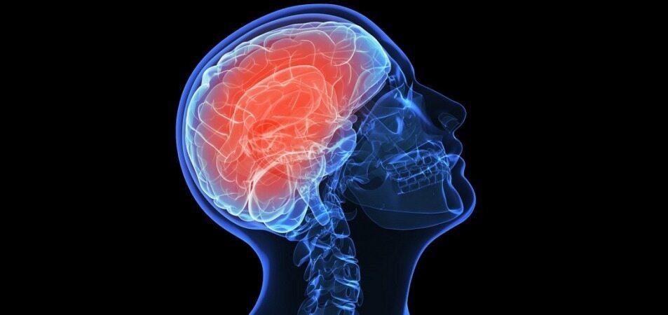 بهبود عملکرد مغز